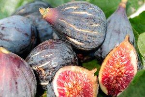 Figs on fig leaf