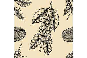 Coffee branches Illustration