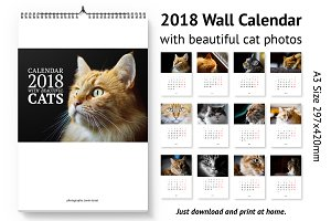 Calendar A3 for 2018 with cats.