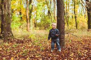 Little boy walking in autumn forest