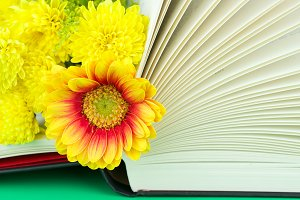 Flowers on the book