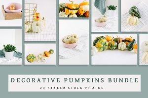 Decorative Pumpkins Bundle