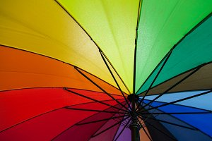 color of the umbrella.