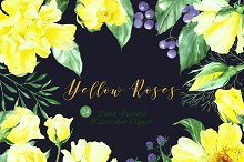 Yellow Roses watercolor  clipart