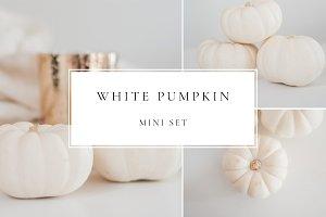 Minimal White Pumpkins