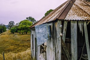 Abandoned outback farming shed.