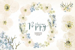 Watercolor alpine poppy wreath