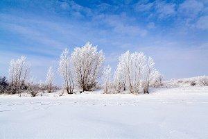 frozen picturesque lake
