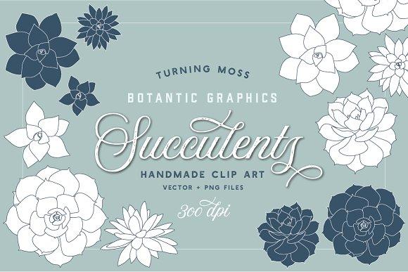 Succulent Clip Art Botanic Vectors