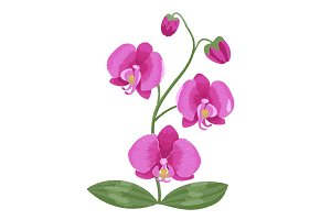 Pink orchid embroidery