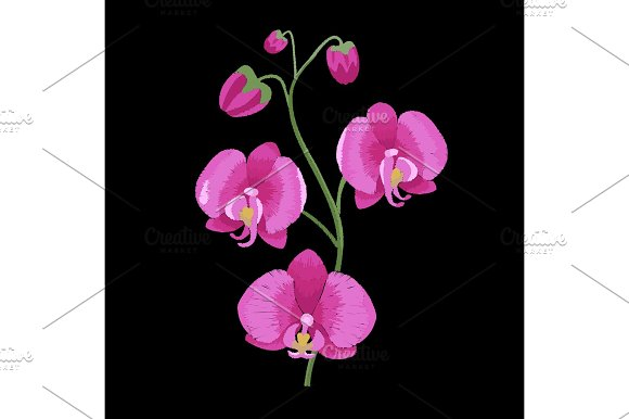 Pink Orchid Branch Embroidery