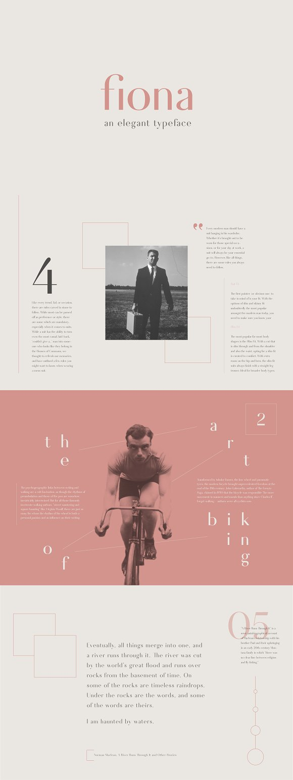 Fiona an elegant typeface sans serif fonts creative market biocorpaavc Image collections