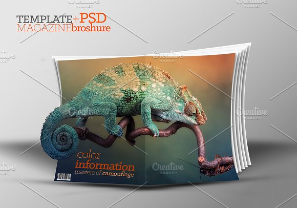 3D Template Catalog PSD Magazine Templates Creative Market