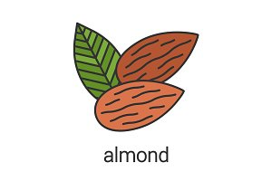 Almond color icon
