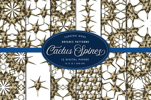 Cactus Spine Patterns Digital Paper