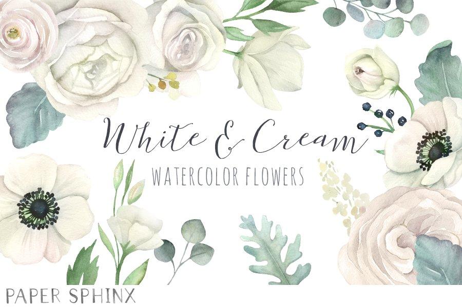 Watercolor white flowers clipart illustrations creative market mightylinksfo