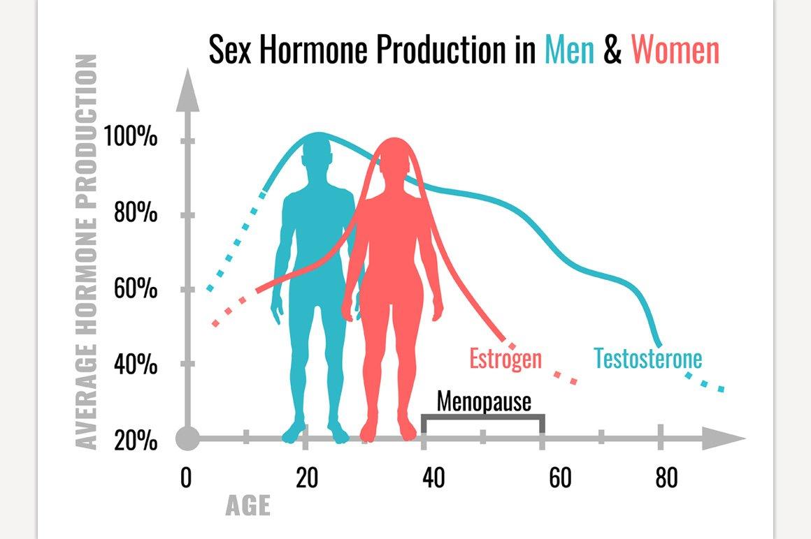 female sex hormones oestrogens ppt in Bundaberg