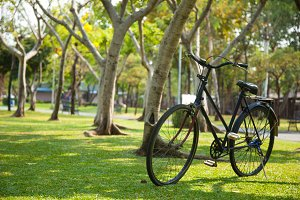 Old bicycle in the park.