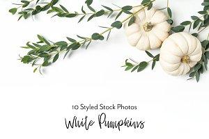 White Pumpkins | Fall Styled Stock