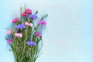 ornflowers on blue wooden background