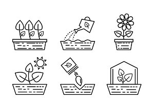 Plant growing line icons