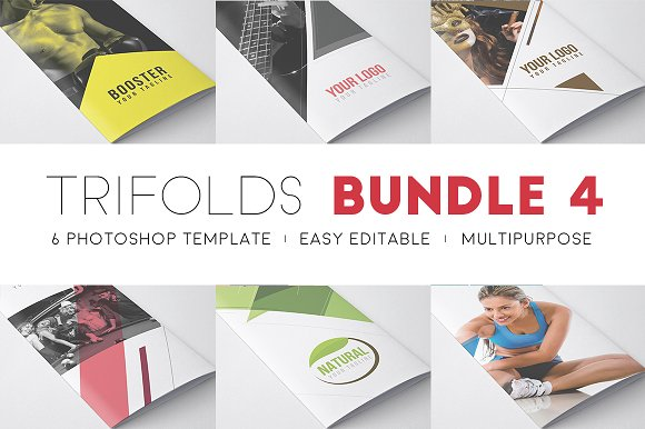 Professional - Trifold Bund-Graphicriver中文最全的素材分享平台