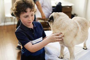 Little boy playing with a pug