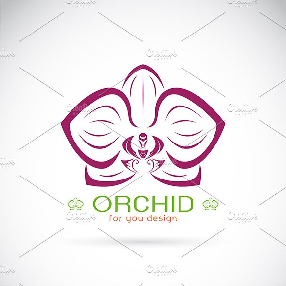 Vector Of An Orchid Logo