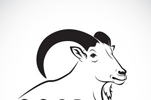 Vector of a goat design.