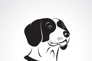 Vector of a beagle dog head.