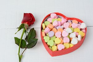 Red Rose and Candy Hearts