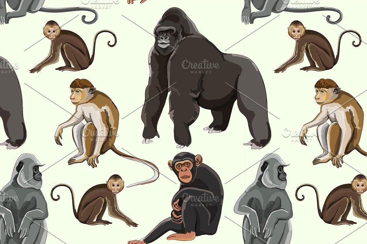 Different types of monkeys pattern