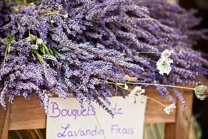 Lavender bunches selling in a market