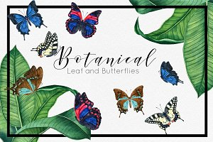 Botanical Leaf and Butterfly