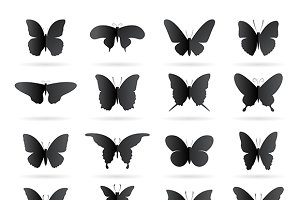 Vector group of black butterfly.