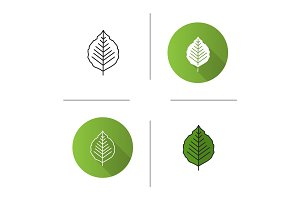 Poplar leaf icon