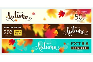 Colorful autumn banner set. Fall sale background with bright maple leaves