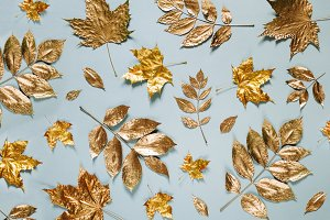 Golden leaves on blue background