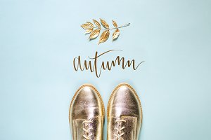 Autumn stylish shoes