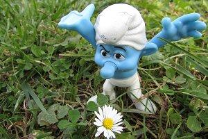 Grumpy loves daisies
