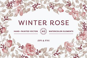 Winter Rose Watercolor Collection