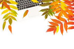 Laptop and autumn leaves