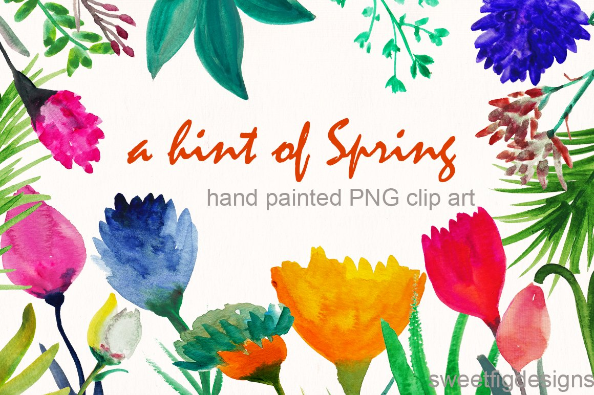 Hand Painted Spring Flowers Illustrations Creative Market