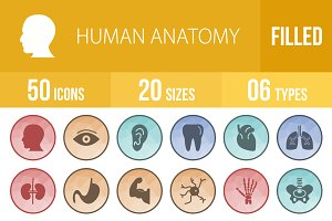 50 Human Anatomy Low Poly B/G Icons