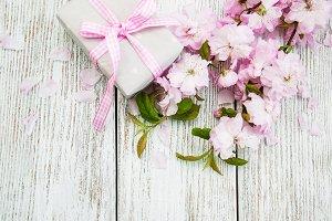 Gift box and sakura