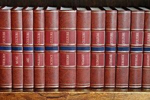 Row of books on a shelf.