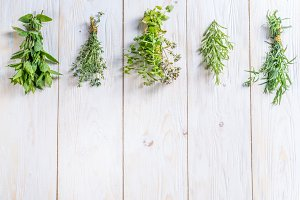 Different bunches of fresh herbs