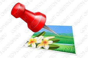 Pinning photo icon