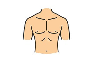 Muscular male chest color icon