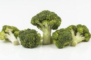 different broccoli florets